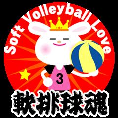 ★軟排球魂★ ソフトバレーボール大好き!