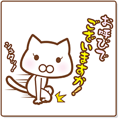 スポーツする白い猫 2