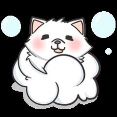 【OTCDP】 - 犬の記事
