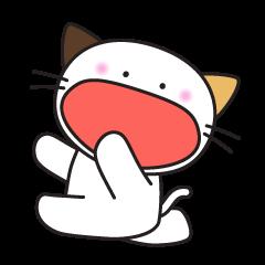 三毛猫みっけ 2
