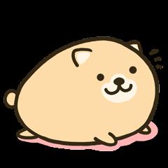 タマゴ犬(1パック目)