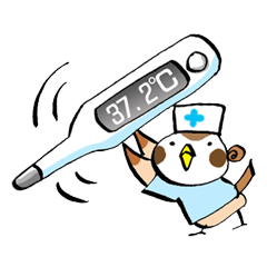 [LINEスタンプ] Get well soon with sparrow nurse