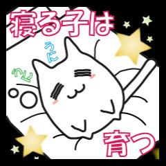 猫、おやすみからおはようまで。