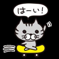 Mr.ネコさん