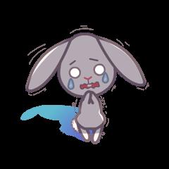 デイジーザ ウサギ