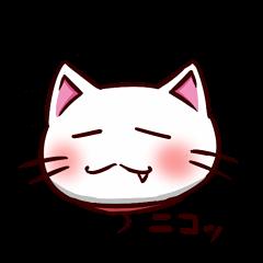 白猫のしゅがー!!<7>