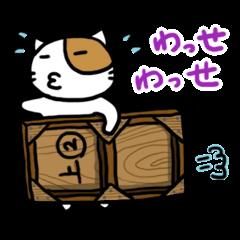 ホイきた☆芝居ネコ!