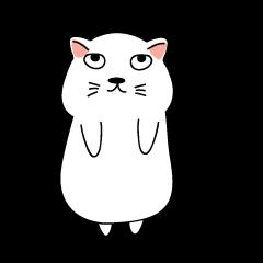 Auan Jung Big Cat