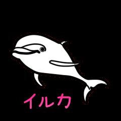 ダジャレ水族図鑑 ver2