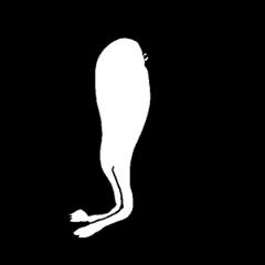 [LINEスタンプ] 半鳥人2