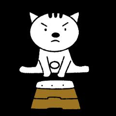 """""""Kawaii"""" Cat"""