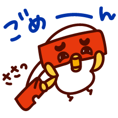 白ヒヨの博多弁!