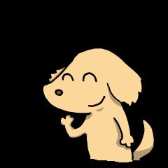 ガラスの心をもつ犬