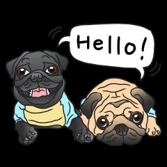 Garcon & Manzo - The Pug Bros