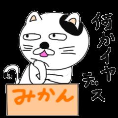 ゆるいうざいむかつく礼儀正しい猫です