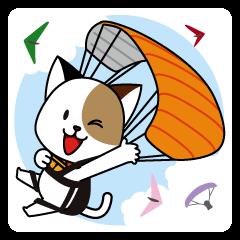 可愛い猫とパラグライダー