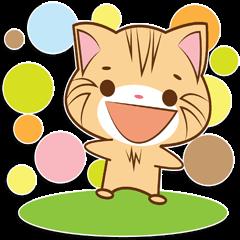 Shiro The Amazing Cat